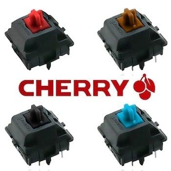 Cherry MX Switches