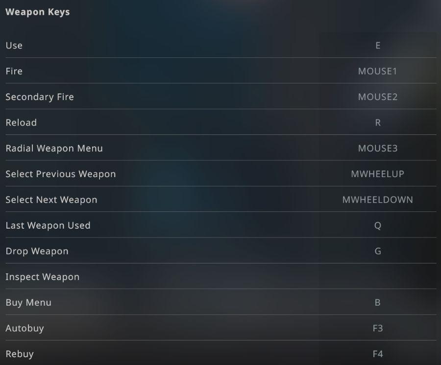 Best Counter Strike Global Offensive Cs Go Settings Of 2021 Hgg
