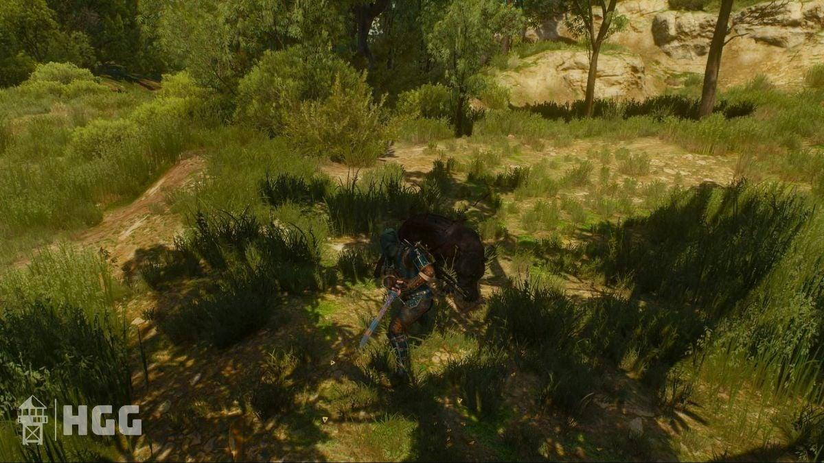 Witcher 3 Steel Swords 8
