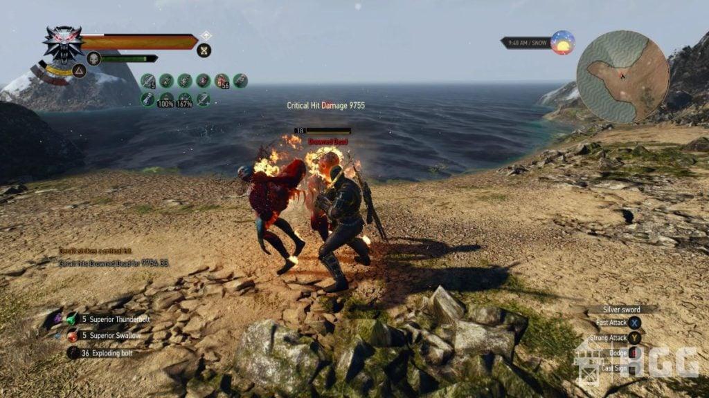 Fighting Duo