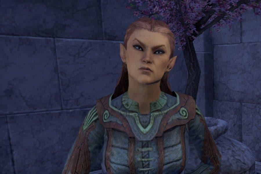 High Elf PVP Magicka Templar