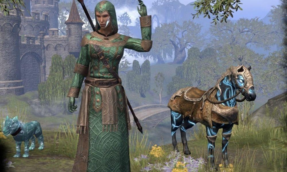 4 Warden Healer (2)