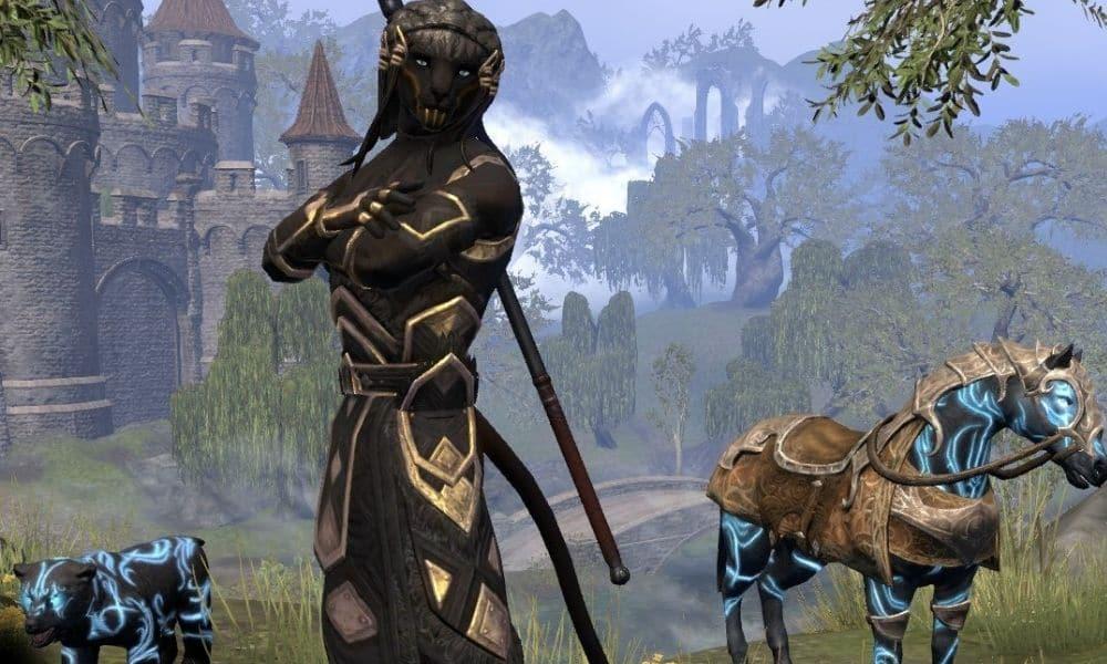 5 Solo Magicka Warden (2)